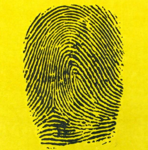 ICE fingerprinting alien